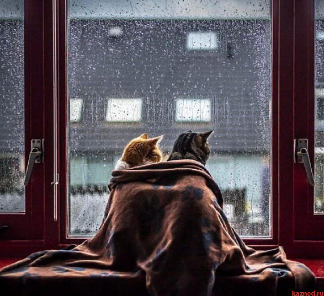 Вовсех домах Казани дали тепло