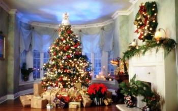 Как украсить интерьер цветами к Новому году: 5 советов от флориста