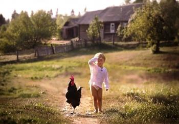 """""""Загородная миграция"""": россияне прячутся от кризиса в сельских домиках"""