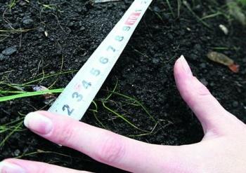 В Татарстане в 2018 г. будет проведена кадастровая оценка сельхозземель
