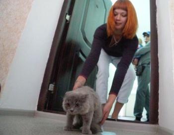 В Казани на 9% вырос объем введенного жилья