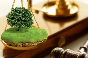 Замглавы района в РТ ждет суд за незаконные операции с недвижимостью