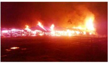 В Татарстане от удара молнии сгорела ферма
