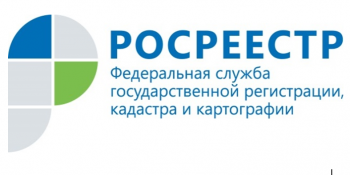 Татарстанцы из реестра недвижимости чаще запрашивают выписку об основных характеристиках и зарегистрированных правах