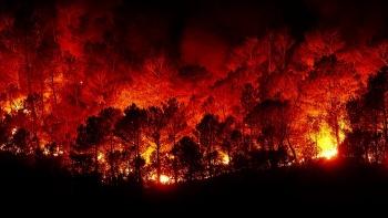 Лесные пожары в Сибири: что ждёт Казань и Татарстан?