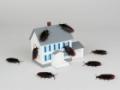 Квартира с обременением: как проверить «чистоту» жилья перед покупкой