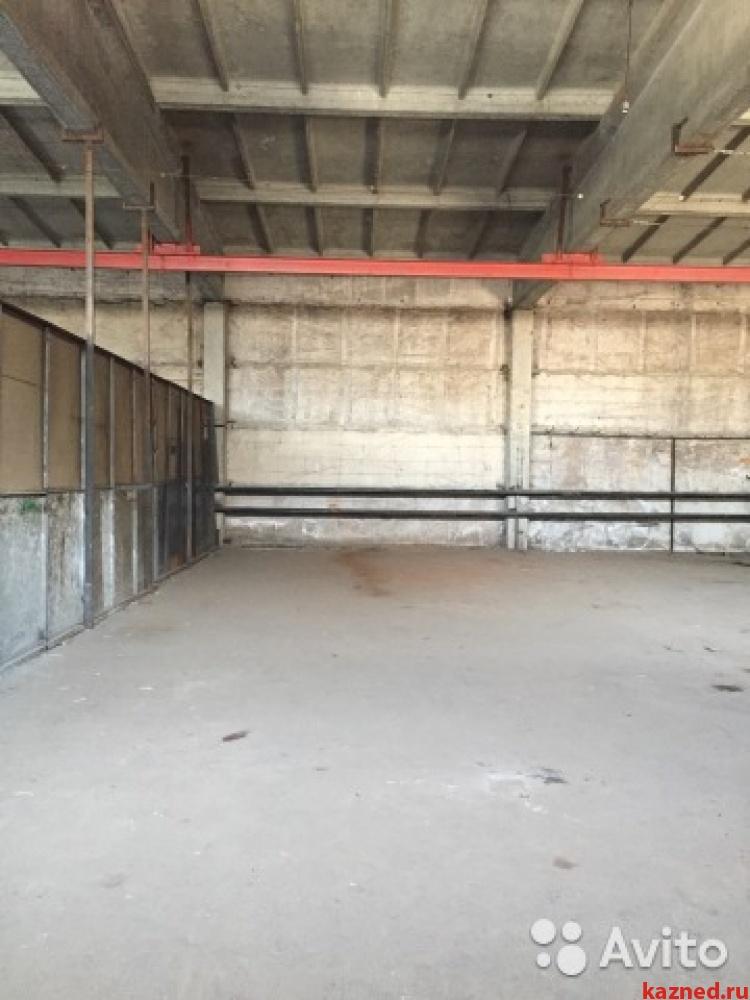 Аренда  склады, производства А.Кутуя,161, 216 м²  (миниатюра №1)