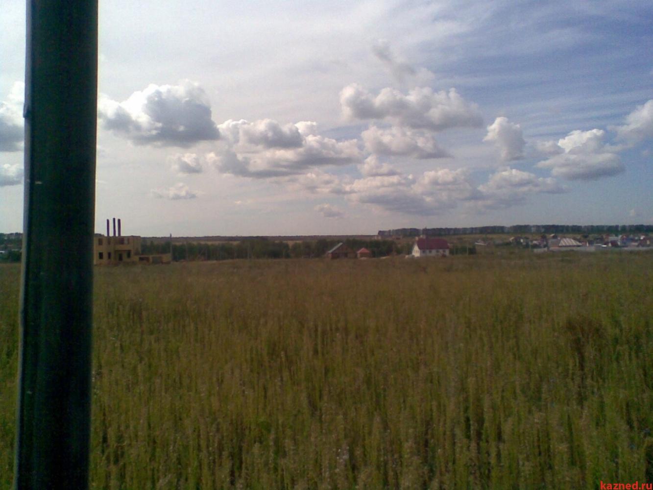 Продажа  участка Село Шали, 50000 сот.  (миниатюра №2)