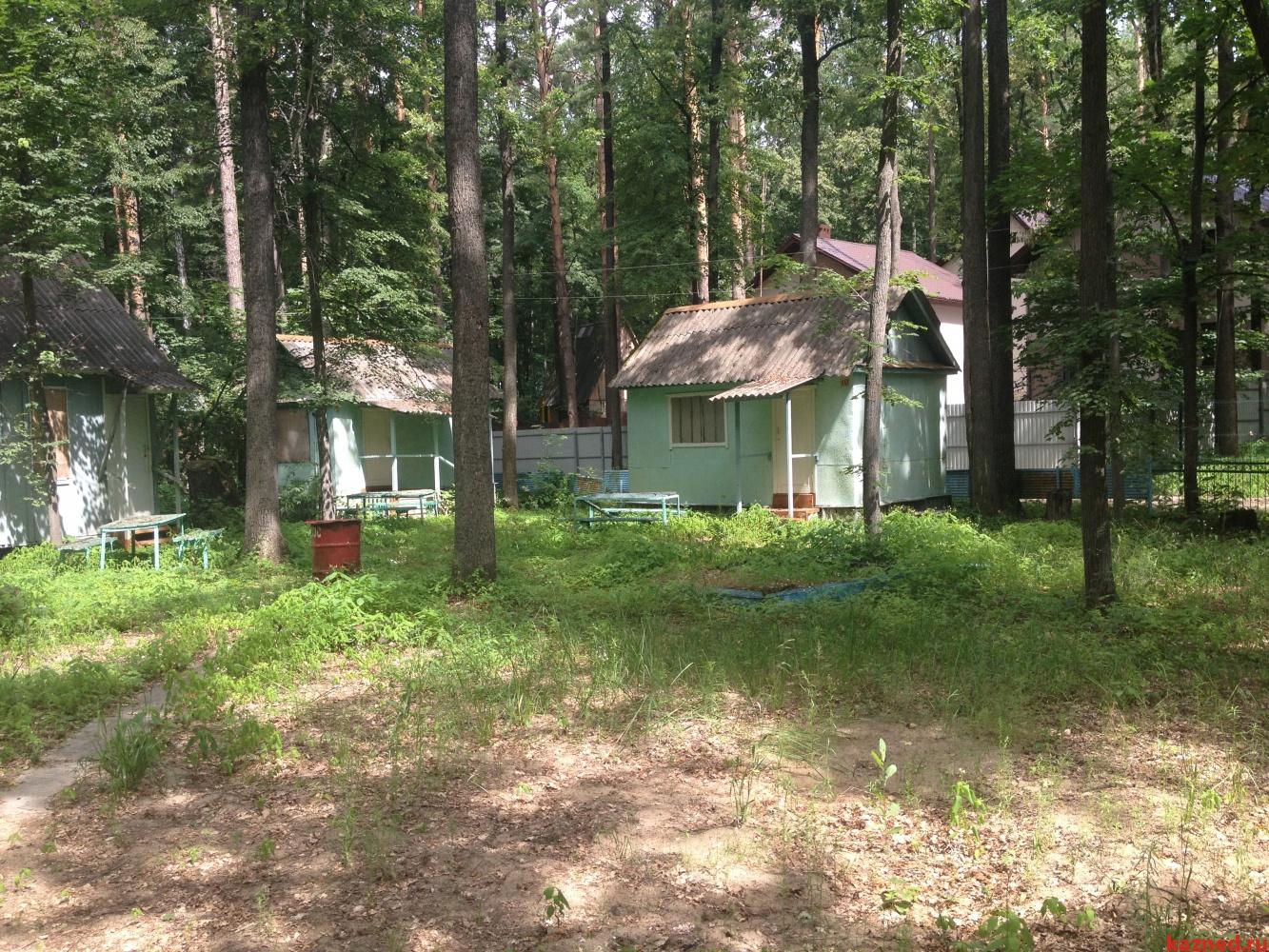 Продажа  дома  Матюшинское участковое лестничество, квартал №70, выдел 17, 0 м² (миниатюра №4)