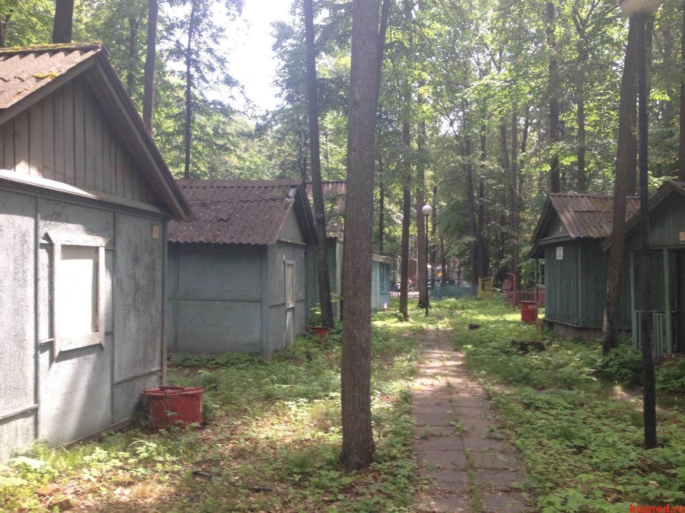 Продажа  дома  Матюшинское участковое лестничество, квартал №70, выдел 17, 0 м² (миниатюра №5)