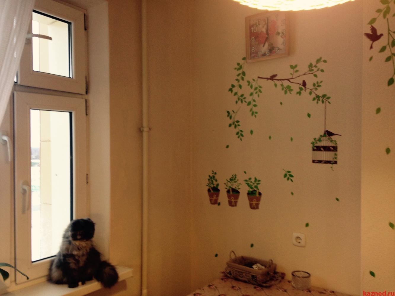 однокомнатная квартира, площадь 29,5 кв.м с. Осиново (миниатюра №2)