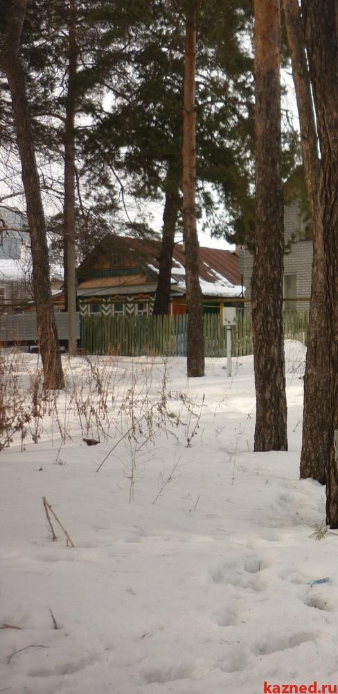 Земельный участок в поселке Васильево (20 км от Казани) в хвойном лесу (миниатюра №3)