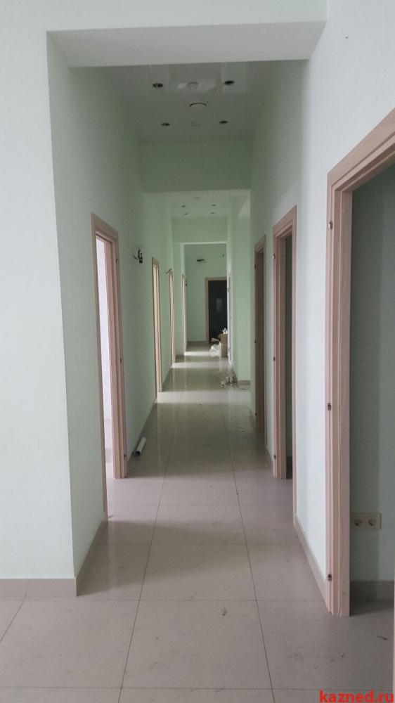 Аренда  помещения свободного назначения Сибгата Хакима д. 42, 75 м²  (миниатюра №5)