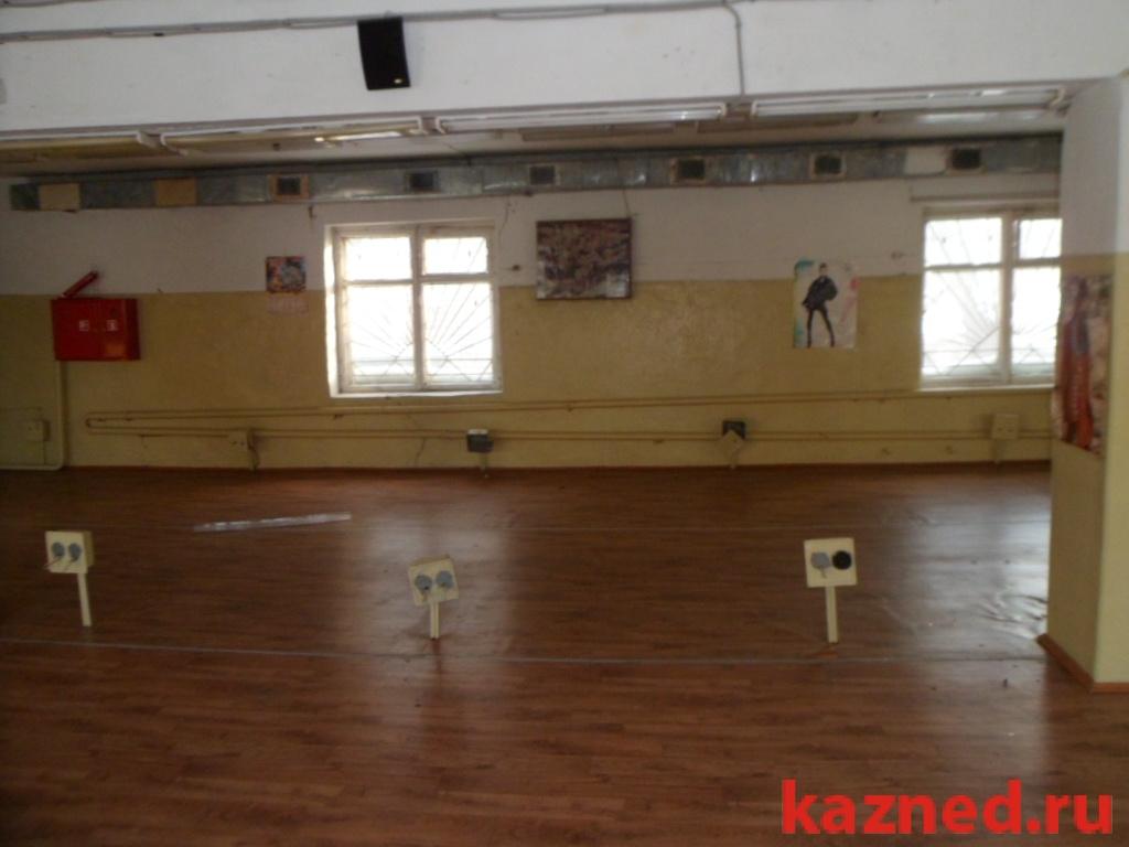 Продам офисно-торговое помещение Чернышевского,35, 1216 м2  (миниатюра №8)