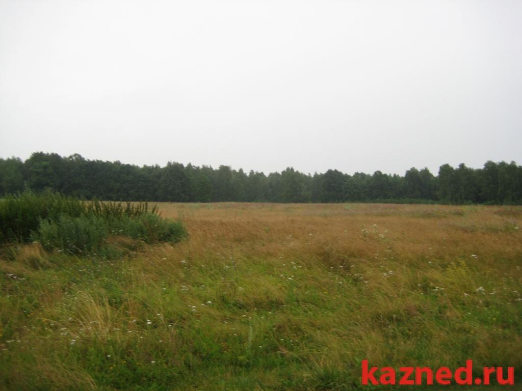 Продам участок село Тетеево,ул. Залесная., 38 сот.  (миниатюра №3)