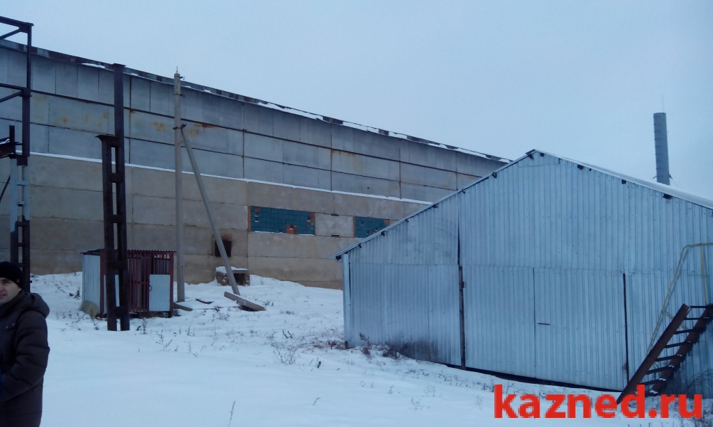 Продам склад, производство, 2096 м2  (миниатюра №8)