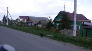Продажа  участка Колхозная, 14.0 сот.  (миниатюра №4)