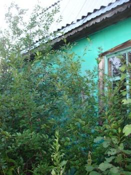 Продажа  участка Зеленый переулок, 6.0 сот.  (миниатюра №4)