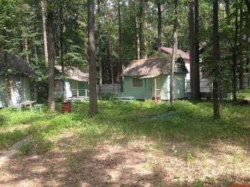Продажа  дома  Матюшинское участковое лестничество, квартал №70, выдел 17, 0.0 м² (миниатюра №4)
