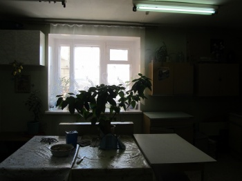 Продажа  комнаты Тополевая, 55, 13 м² (миниатюра №16)
