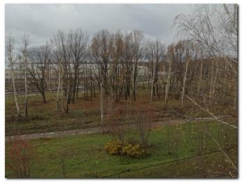 Продажа 2-к квартиры Химиков,39, 46.0 м² (миниатюра №12)