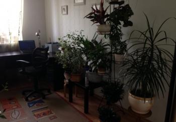 Продажа 3-к квартиры Сибирский тракт, 22, 101 м² (миниатюра №8)