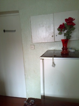 Продажа  комнаты Ботаническая, 18 м² (миниатюра №3)