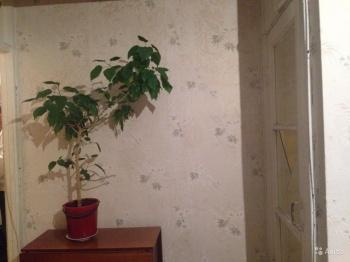 Продажа 1-к квартиры Чкалова, 1, 31 м² (миниатюра №4)