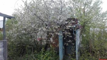 Продажа  дома , 60 м² (миниатюра №1)