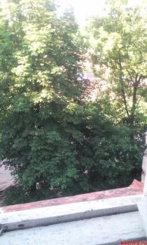 Продажа  комнаты Курск , Ул. Гагарина, 13 м² (миниатюра №10)
