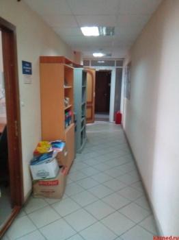 Аренда  офисно-торговые Лево-Булачная, 24/20, 175 м² (миниатюра №5)