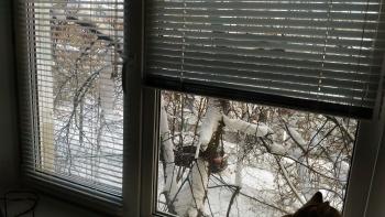 Продажа 1-к квартиры Беломорская, 246
