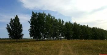 Продажа  участка Большекургузинское сельское поселение