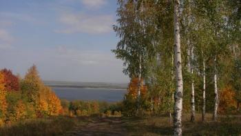Продажа  дома Н.Ларягина д. 5, 220.0 м² (миниатюра №6)