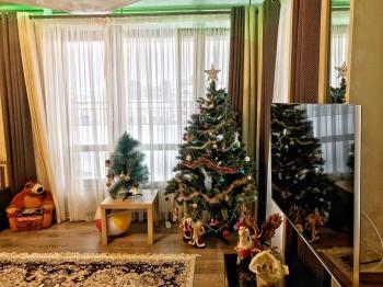 Продажа 2-к квартиры Петербургская 65а